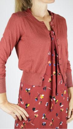 LE-PEP-vestje-Elisabeth-rood-IEZ-jurk-Bow-violets