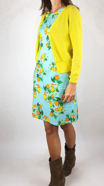 cissi-och-selma-jurk-alice-citrus-froy-dind-vest-gerdy-geel